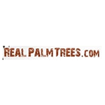 Real Palm Trees